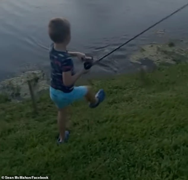 , Shocking moment as alligator RUNS out of water and STEALS boy's fish, pole as stunned father films, Nzuchi Times National News