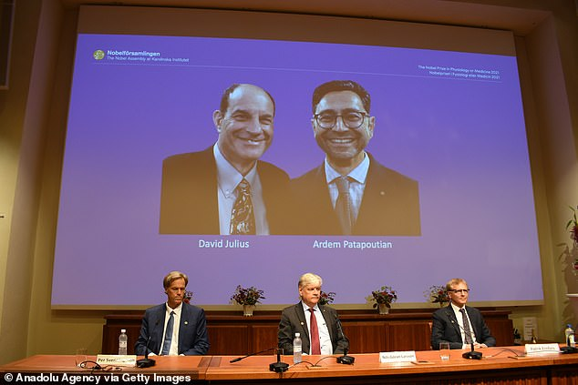 David Julius and Ardem Patapoutian (pictured on the projection) shared the Nobel Prize for medicine
