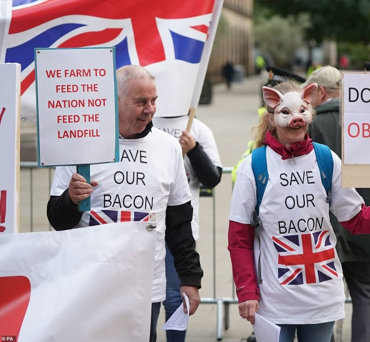 Pig farmers protesting outside the Conservative Party Conference in Manchester as it was revealed pigs are now being slaughtered and burnt