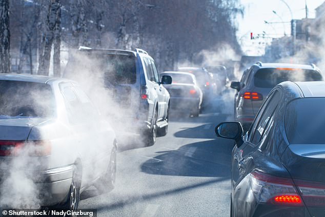 The risk of heart failure was increased by 43 percent in a study of Danish women, both from pollution from traffic, material from exhaust pipes and the noise generated by engines.