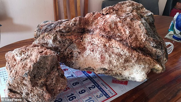 Phetcharaj later took the object to experts at the Prince of Songkla University to have it tested - and the results proved that it was genuine ambergris