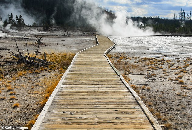 Around 20 people have died due to some sort of interaction with park thermal areas since the park's establishment in 1872, according to the USG