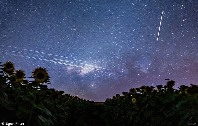 SpaceX has been in public controversies and lawsuits over its Starlink satellites.  This composite image was taken from the evening sky over a sunflower field in southern Brazil, capturing the passing Starlink satellites