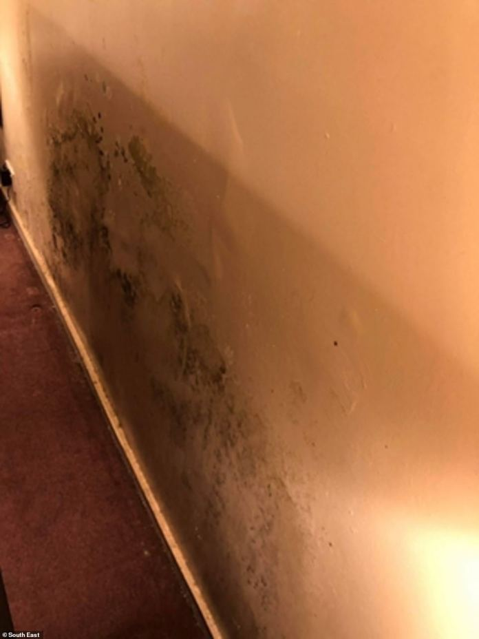 She said the issues stem from the contractor, Amey, who she claims 'do as little as possible to maximise profit' andare taking advantage of the terms of their contract with the Ministry of Defence. Pictured: Mould in the house inGreater London