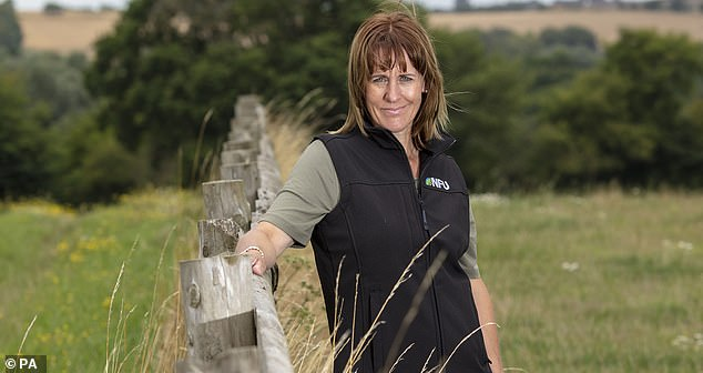 Minette Batters (pictured), President of the NFU, told The Mail on Sunday: 'We want the required level of English to be lowered so there is a wider pool of workers who can come here and help to resolve this crisis