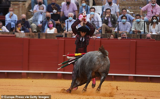 Banderillero in the fourth bullfighting festival of the fair of San Miguel. Bullfighting businesses were angry the Spanish government left out out of subsidy plans for other cultural activities in next year's budget