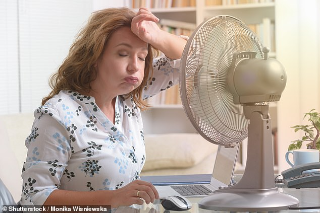 Menopause, which can usually cause symptoms such as hot flushes, usually affects women between the ages of 44 and 55 in the UK.  Now a new study suggests that the length of the last period before menopause may carry important clues to future risk of heart disease, women's biggest killer in the UK (stock image)