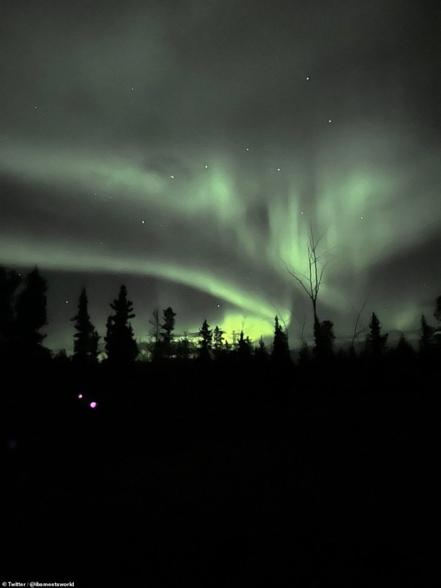 Yesterday's solar storm, predicted by both the UK Met Office and the US National Oceanic and Atmospheric Administration, was slower than expected to reach Earth.  Photo: Northern Lights above a tree line in White Horse, Yukon, in northwestern Canada.