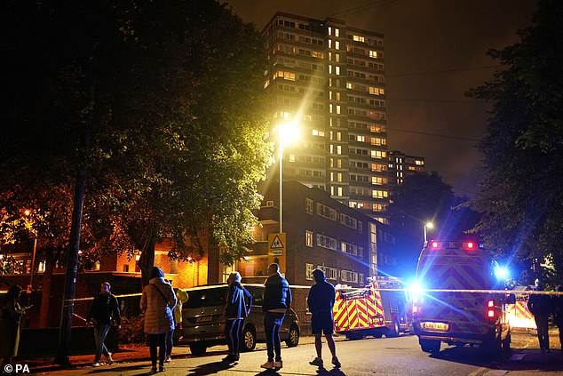 Station Commander Pete Johnson, who was at the scene, said: 'Crews were faced with a lot of smoke issuing from the top of a block of flats on arrival'