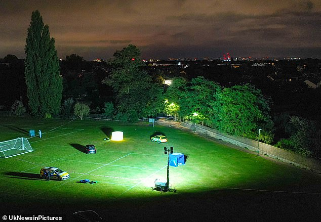 Metropolitan Police are investigating the death of a teenager after he was fatally stabbed on playing fields in southwest London