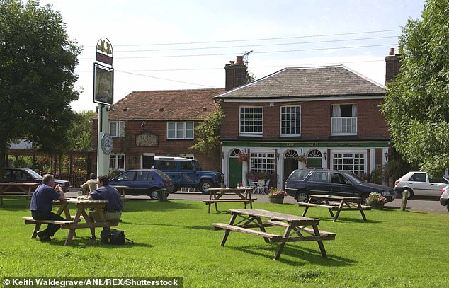 The Sun Pub in the rural village of Dunsfold in Surrey, the centre of a long-running battle between the two neighbours