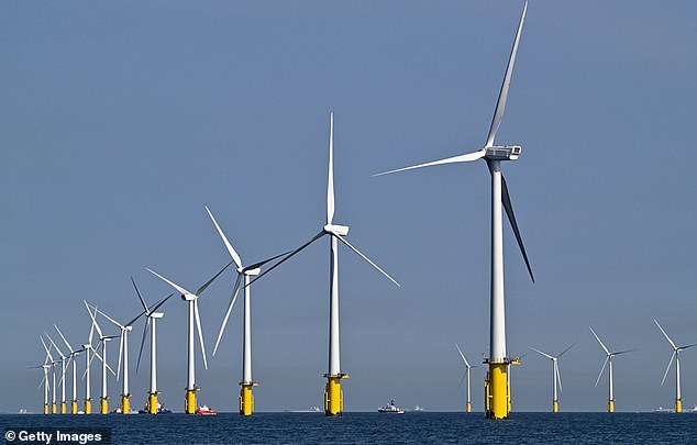 Green taxes: The International Monetary Fund has warned that countries may have to hike taxes to pay for environmentally friendly policies such as renewable energy schemes