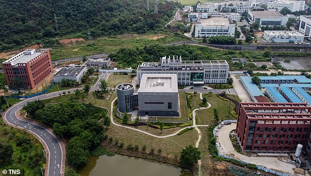 , 'Our last chance to find Covid-19 origins': WHO urges China to provide data from early cases, The Today News USA