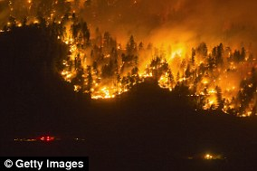 The amount of land in North America devastated by wildfires each year is set to rise, according to new research (file photo)