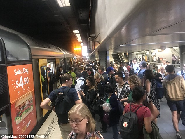 Tragedy: A train passenger died at Sydney's central station today, causing mass peak-hour disruption across the city