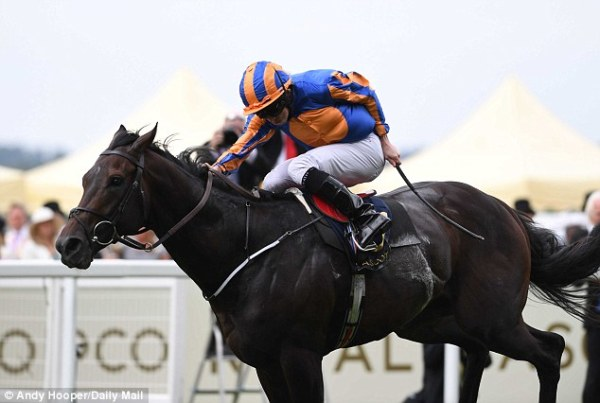 Aidan O'Brien's Ballydoyle stable... who are the ones to ...