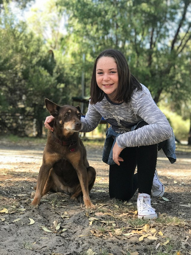 Maya Wicksteed, 12, was attacked by six dogs in 2012 - but has worked to get over her fear of dogs - she is pictured here with her pet Honey