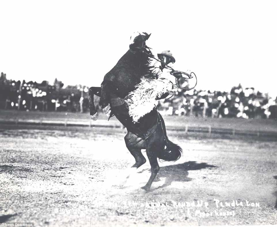 Pictured riding again in 1916, Jess Stahl was a legend in the old West.Nothing is known about his childhood other than he had a brother named Ambrose. Both brothers joined the rodeo circuit but only Jesse went on to fame. He would thrill fans at shows and earned a reputation as a magnificent rider
