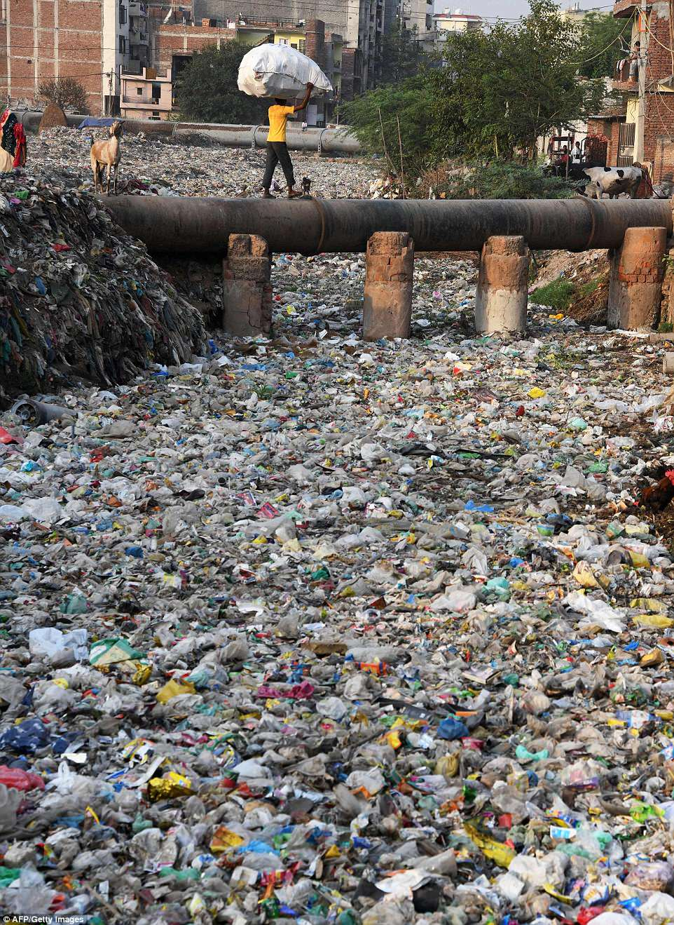 Squalor: A sea of plastic is seen spreading through the New Delhi slum of Taimur Nagar - a symbol of the grime and waste that makes the Indian capital one of the world's most polluted cities