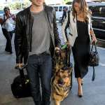 Ian Somerhalder and Nikki Reed lose their dog,Ira to cancer
