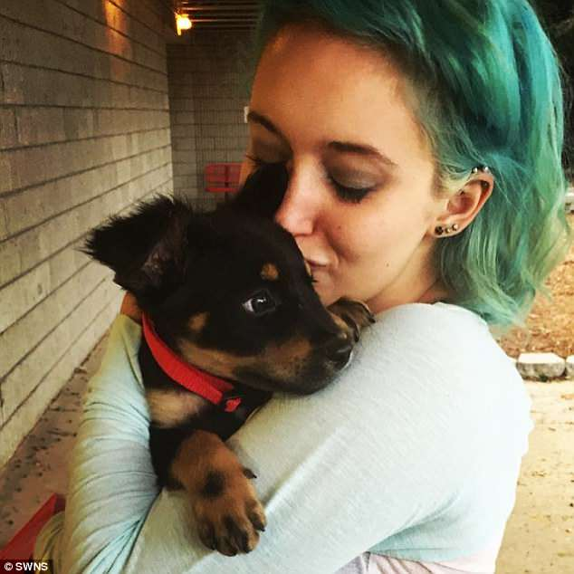 Watchdog: Lauren volunteers at an animal shelter and recently got a therapy dog