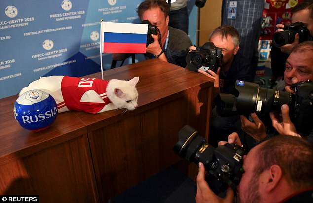 Achilles then posed for the cameras next to a Russian flag and football on Tuesday afternoon