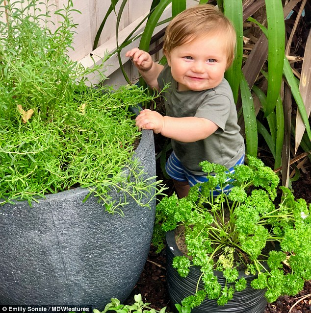 Baby Hunter, aged 14 months ,(pictured) is being raised on a completely vegan lifestyle