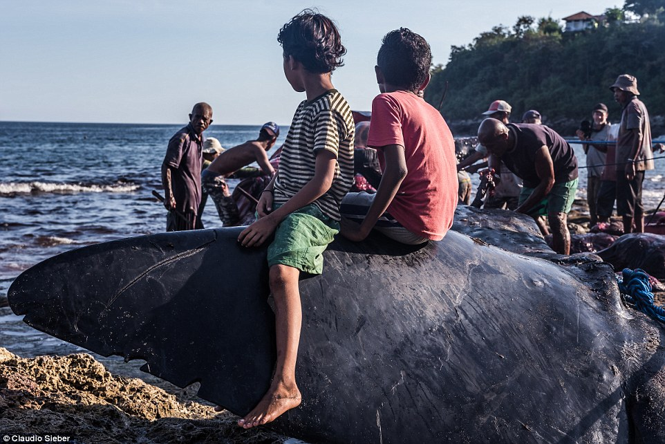 Two boys sit on top of a whale fin while a team of villagers work to carve up the body of the dead beast just meters away