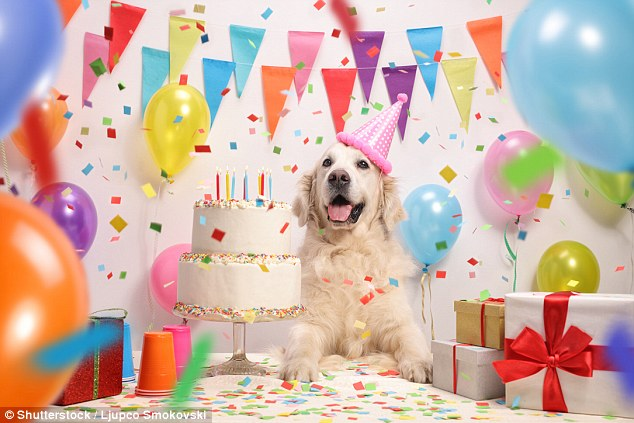 Some of the more interesting and unusual jobs on offer include puppy party planner