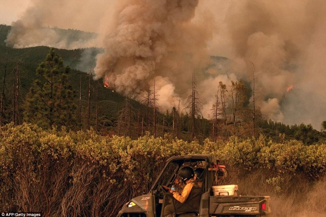 Firefighters assess a fire burning in Stanislaus National Forest which has been filling the Yosemite Valley with smoke