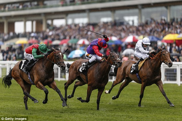 Urban Fox has enjoyed a fine season and will be in position to attack the Goodwood course