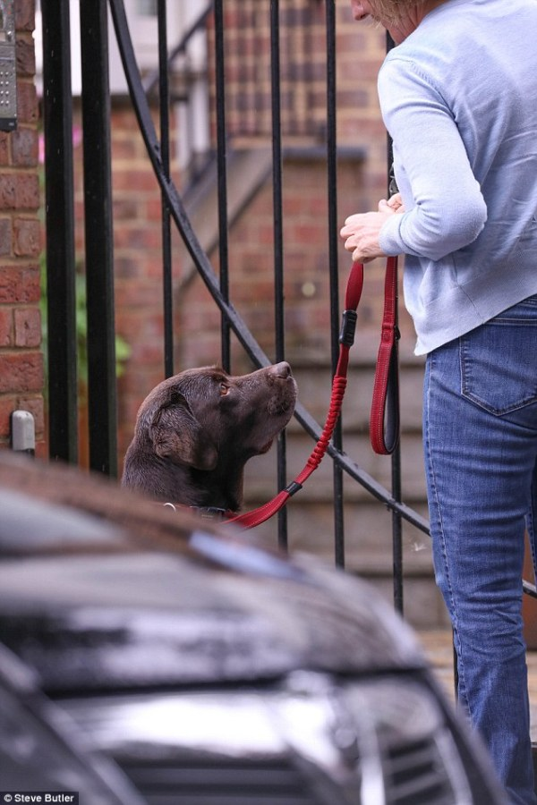 Lisa Armstrong is reunited with dog she shares with Ant ...