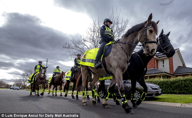 Victoria Police has been criticised for not making any arrests on the night, with some warning the situation was not under control
