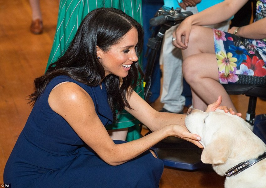 Duchess Meghan was seen patting a guide dog in the reception of Government House