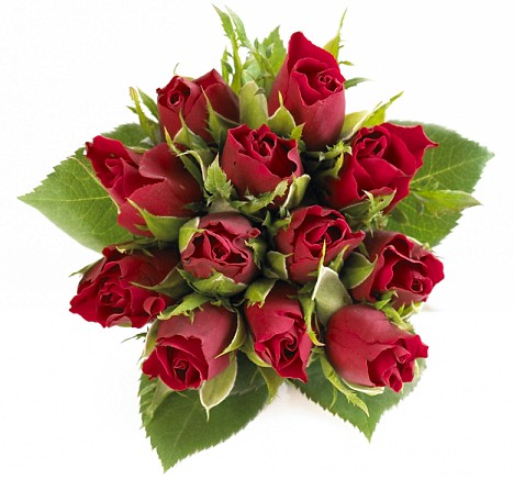 2 Bunch Of Roses The Budget Bouquet For Valentines Day