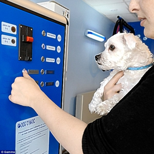 A pet owner puts money in the Dog' O' matic dog washing machine