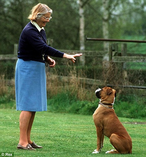 Home Dog Training Grimsby