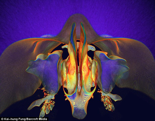 What lies beneath: Radiologist Kai-hung Fung uses a CT scan to capture this amazing image of the back of a human nose Read more: http://www.dailymail.co.uk/news/article-1208473/Real-parts-human-body-transferred-masterpieces-CT-scan.html#ixzz0P8AqawOj