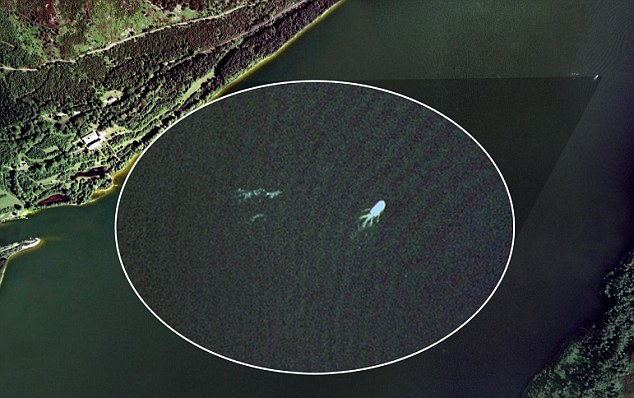Jason Cooke says this Google Earth image looks just like the Loch Ness Monster