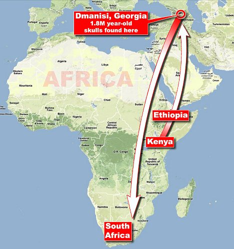 our ancestors left for Europe at least 1.8million years ago, before returning to Africa