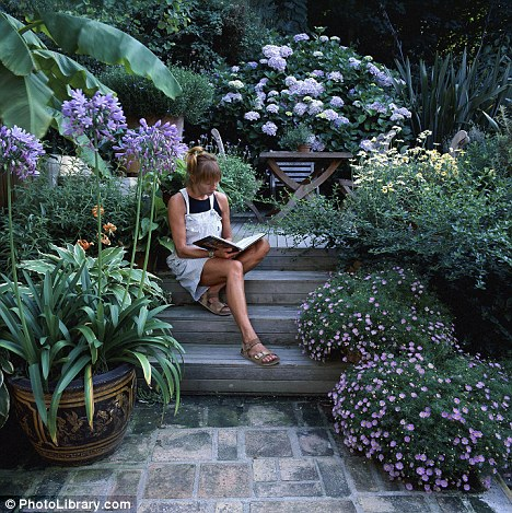 Pass on the grass: A garden without a lawn is low ... on No Lawn Garden Ideas  id=74710