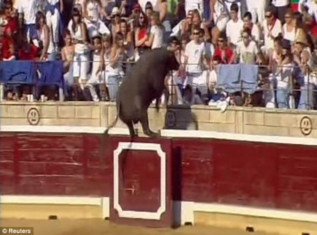 Athletic Bull leaps into stands to take fight into the crowded sadistic spectators...