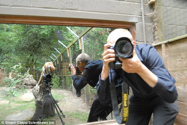 Gotcha: The clever cub managed to press the shutter release button  and captured this image of Simon Czapp photographing her