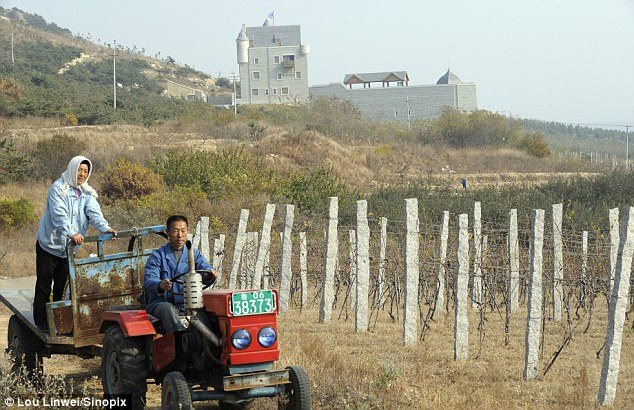 Local workers at the Treaty Port Vineyards in Shandong Province. The Scottish castle in the background is at the heart of the winery