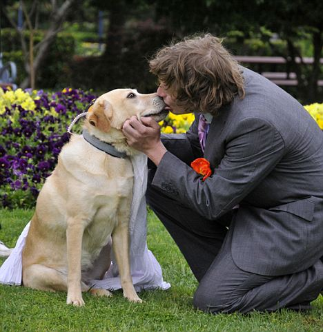 Image result for man marries his dog