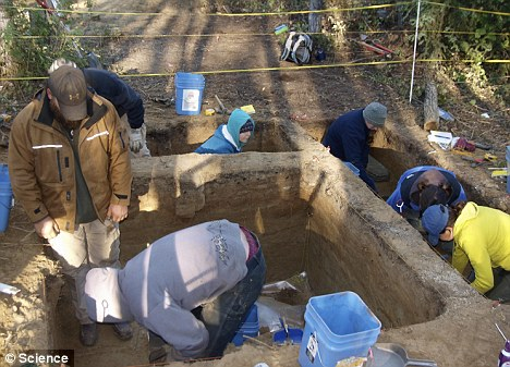 Exciting discovery: Scientists say the burial site on the Upper Sun River has given them a 'whole piece of the settlement system that we had virtually no record of'
