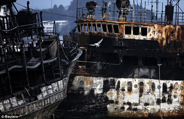 Aftermath: A seagull flies past the burnt-out hulks of two ships in Kesennuma