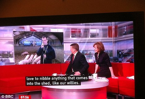 Error: This subtitle mistake on BBC Breakfast became an internet sensation when an eagle-eyed viewer posted the shot, describing pigs, online