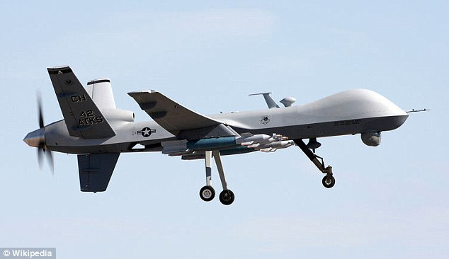 Cheaper alternative: America's Predator B, or MQ9-Reaper drone, costs about $10.5million, compared to an F-22 fighter jet's $150million price tag