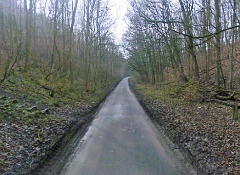 Scenic: The teenager had been cycling in East Yorkshire's Elloughton Dale when the accident happened
